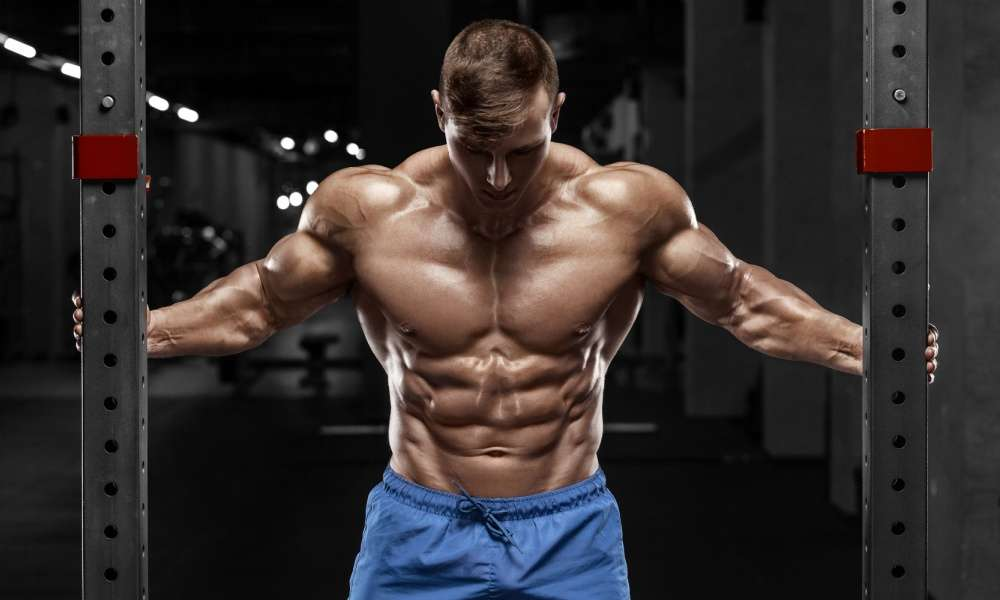 The Most Versatile Abs Training Manual for Beginners