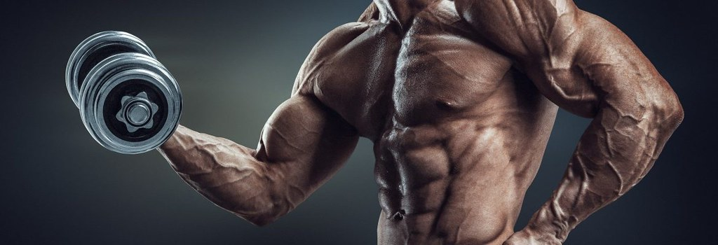 Best Supplements to Get Ripped and Build Muscle