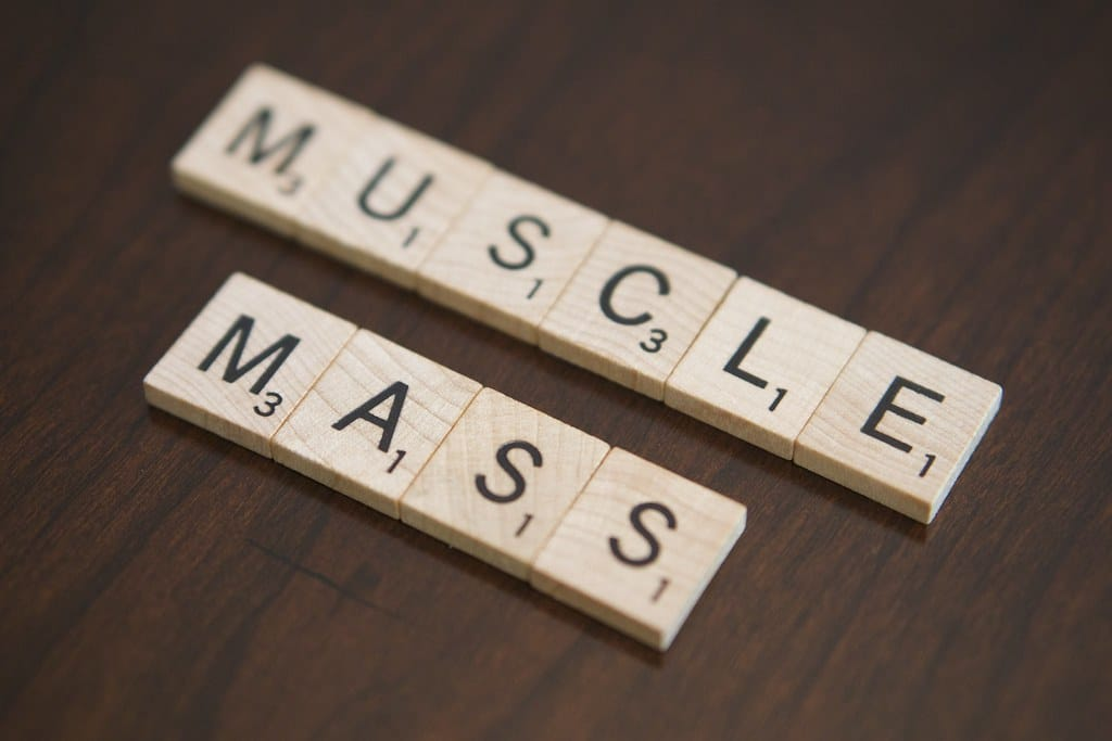 can you build muscle while in ketosis